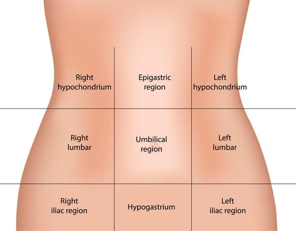 9 Regions of The Abdomen